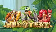 Игровой умная голова Wild Turkey ото Максбетслотс - онлайн казино Maxbetslots