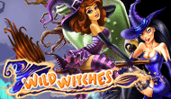 Игровой автомат Wild Witches от Максбетслотс - онлайн казино Maxbetslots